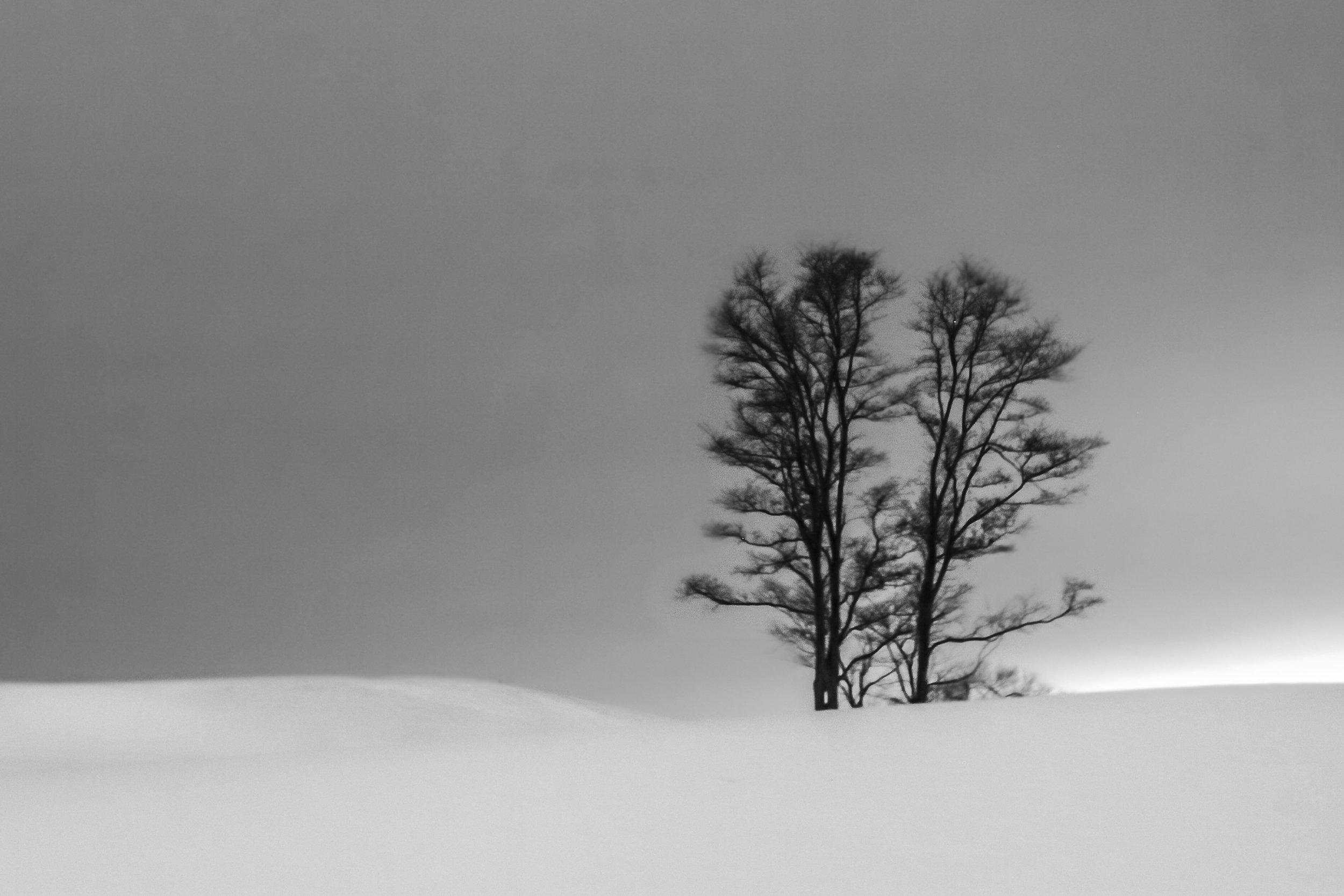 untitled shoot-8294.jpg