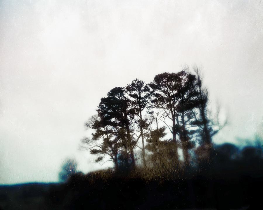 untitled-8606-Edit.jpg
