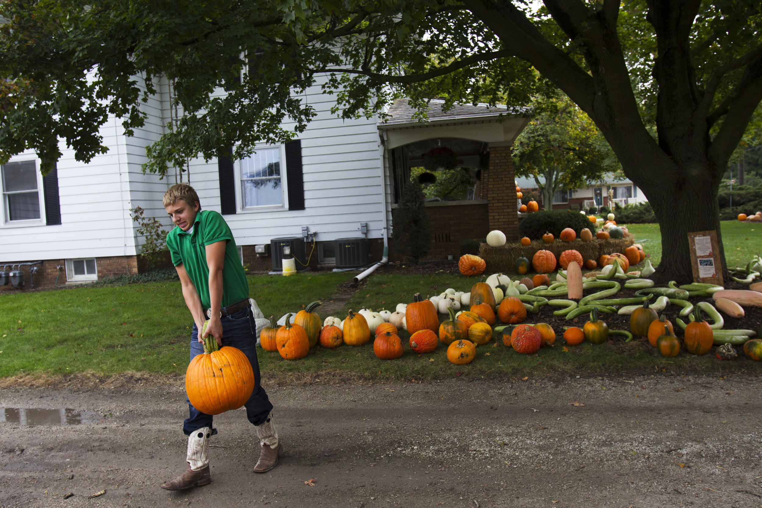 A local boy lugs a pumpkin back to his mother's truck from the Abke property just outside Pemberville. The Abke's get by on their family farm by holding day jobs and selling seasonal produce. Anyone who purchases their produce is on the honor system; they're asked to leave money in a box near the door.