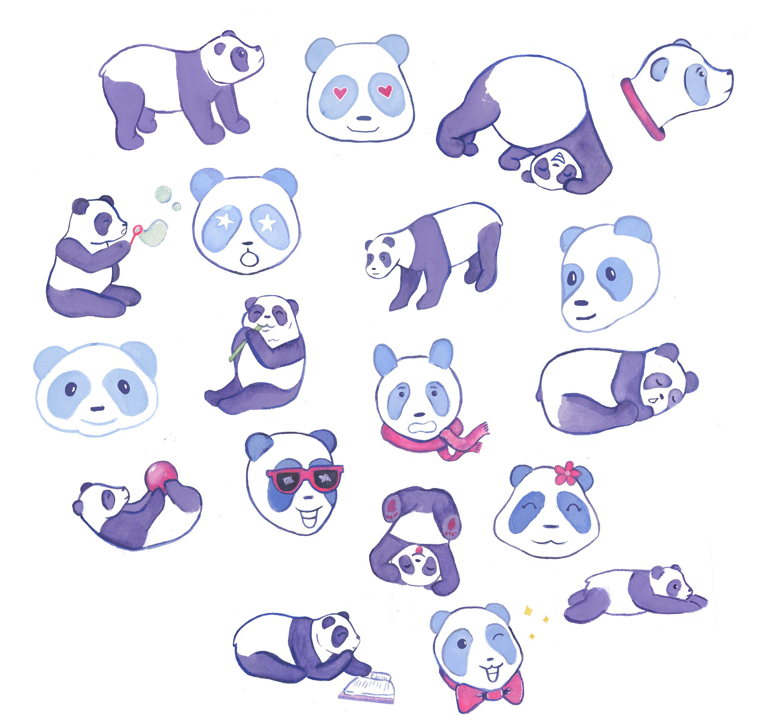 pandas2_web.jpg
