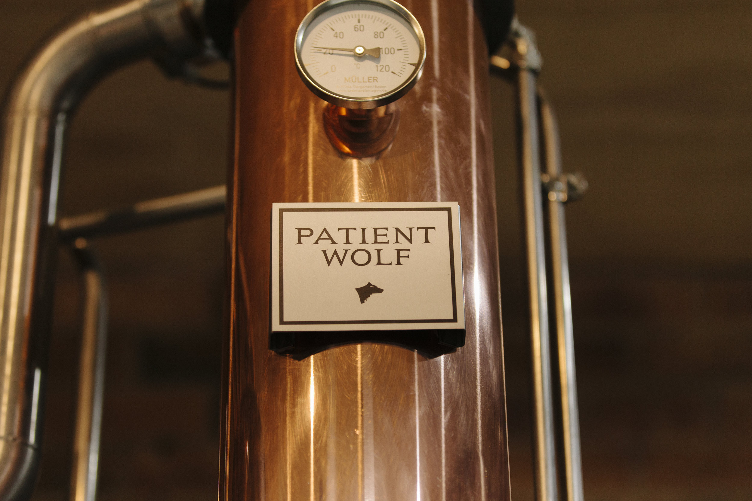 PatientWolf_AShackleton_24.jpg