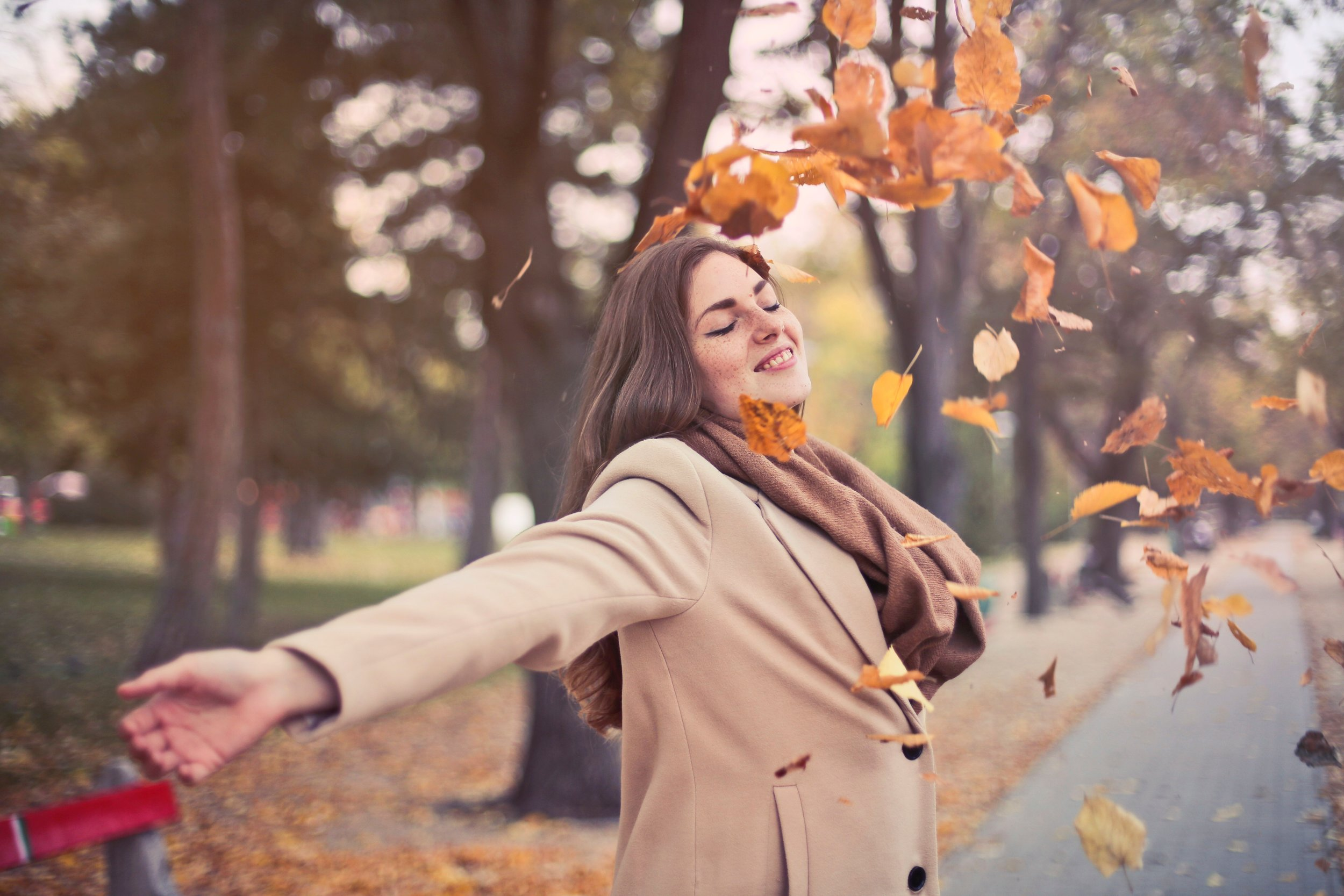 fabulous fall is here
