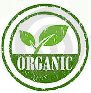 Why Organic Matcha Green Tea