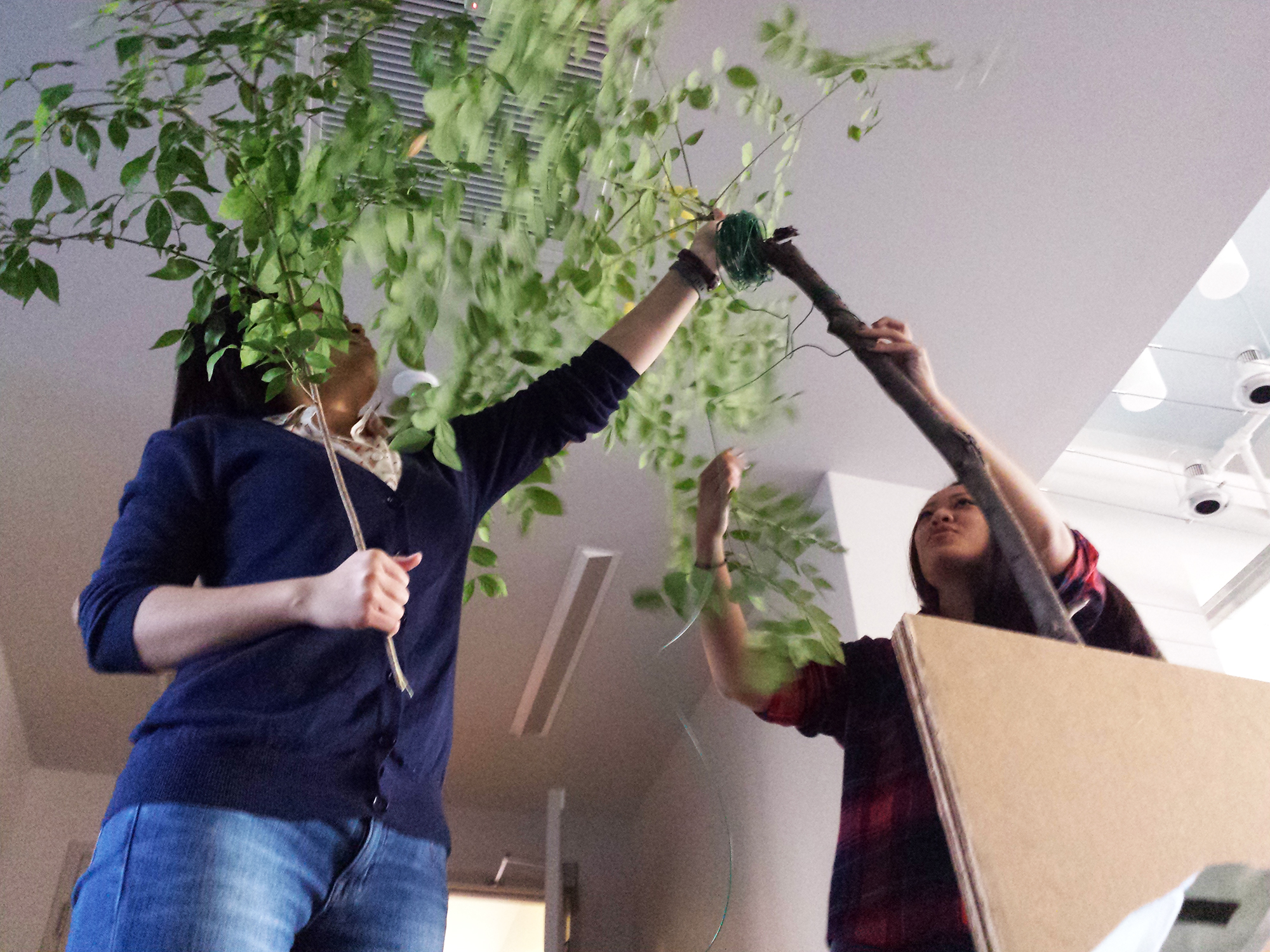 "Making ""trees"""