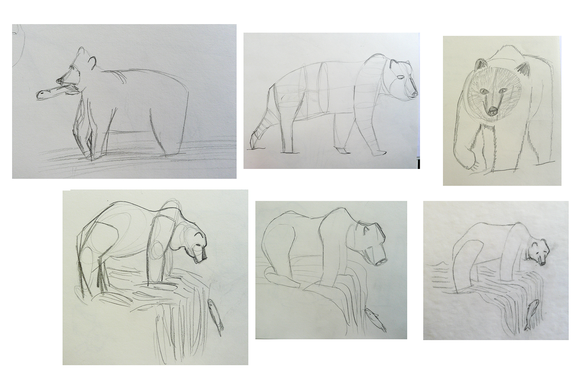 bear-sketches2.jpg