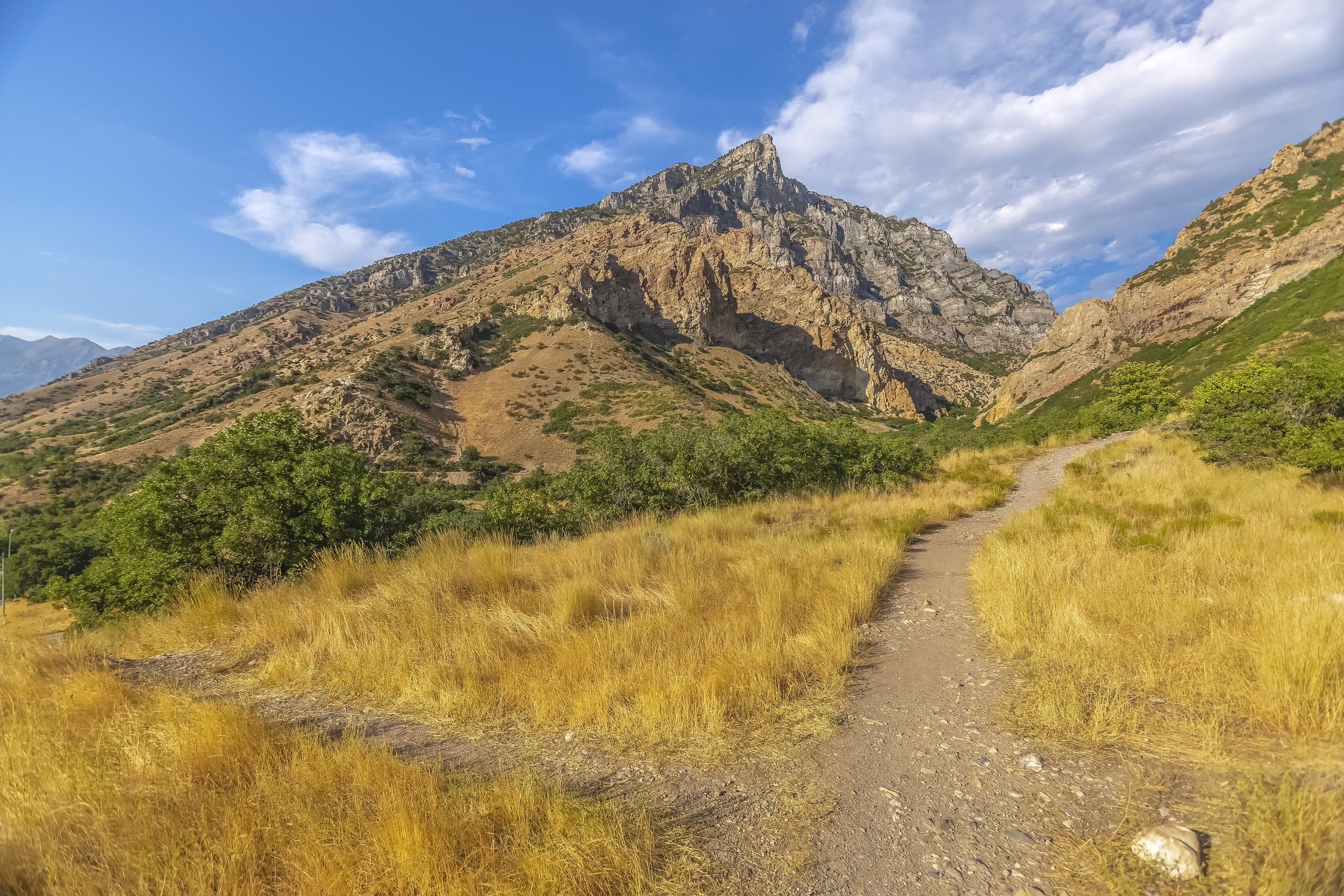 Crossing trails in Provo Canyon.JPG