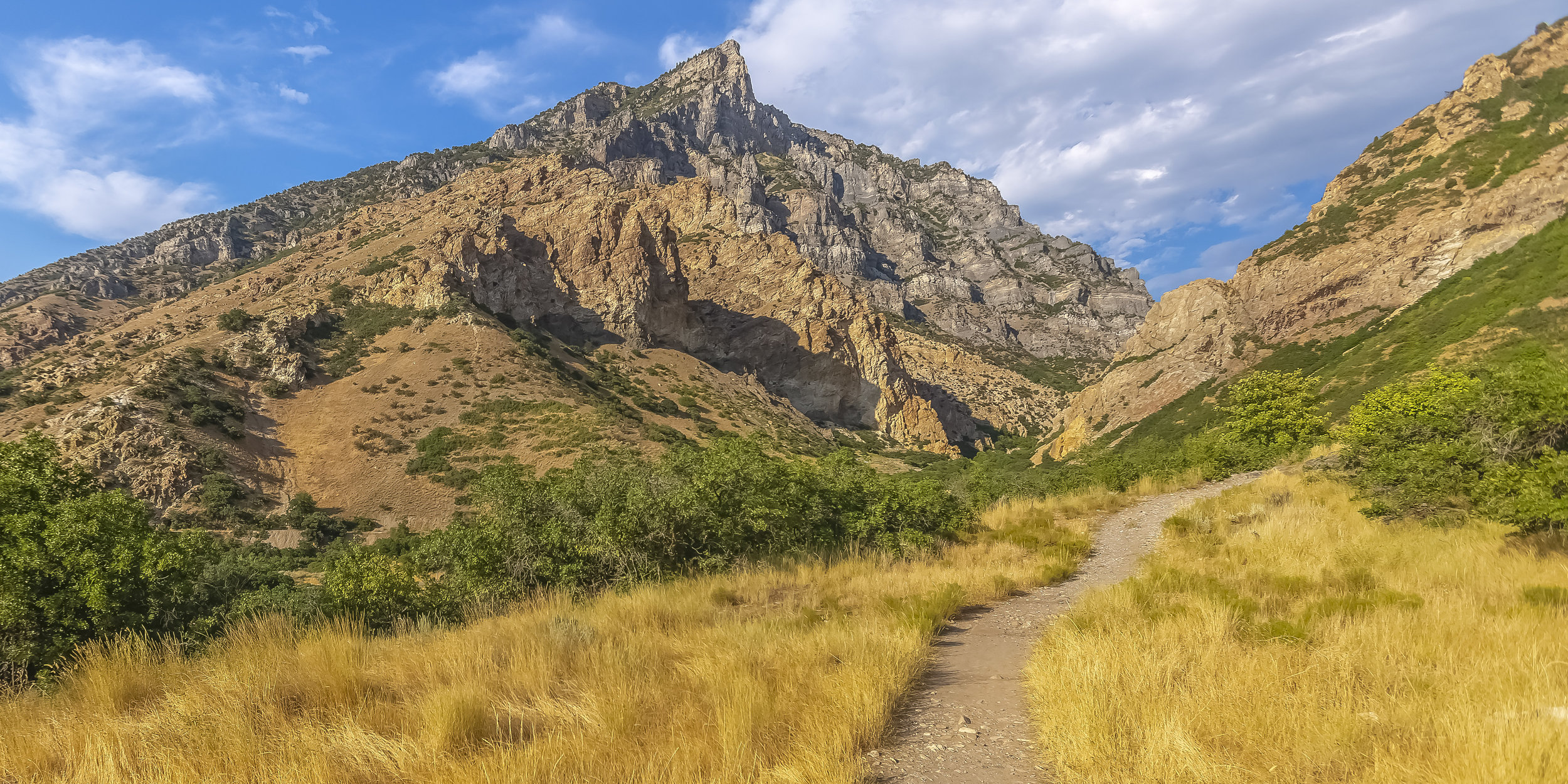Hiking trail in the wilderness of Provo Utah.JPG