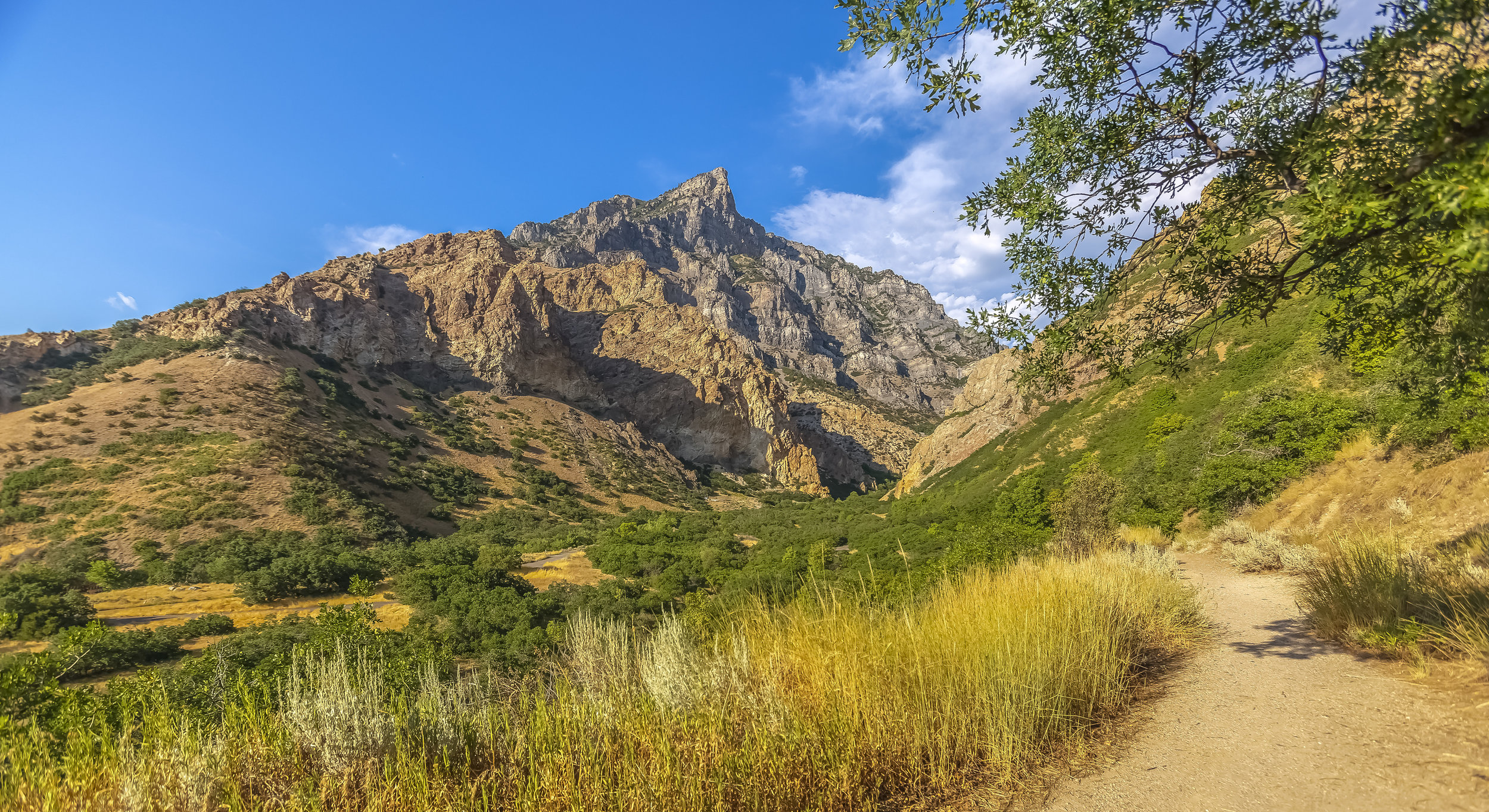 Empty Trails in Provo Canyon with mountains pano.JPG