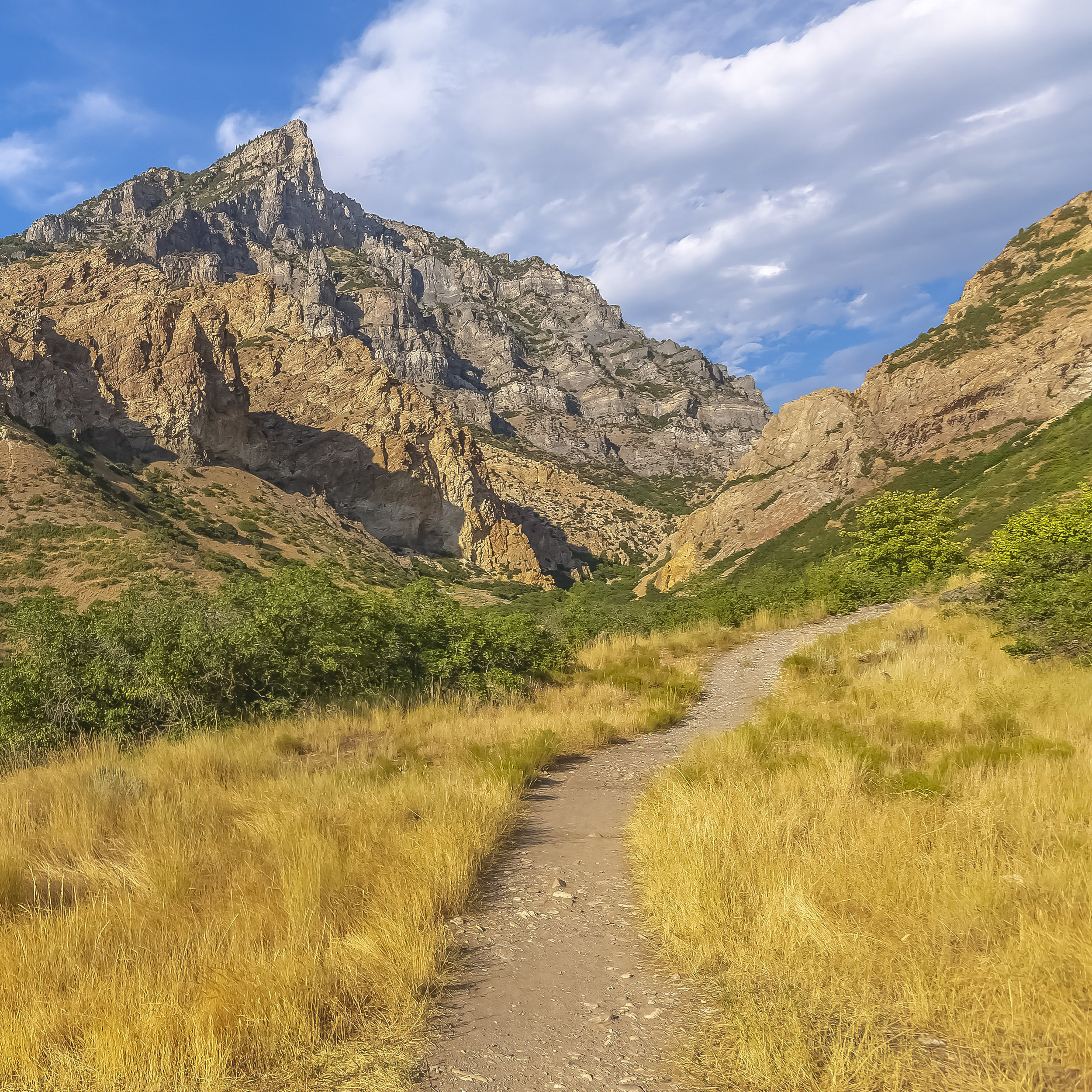 Trail leading to the rough mountain in Provo Utah.JPG