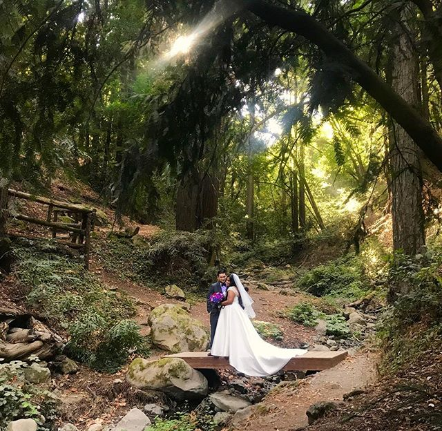 A beautiful wedding in the mountains and two beautiful partners for life! Congratulations! ✨🌲