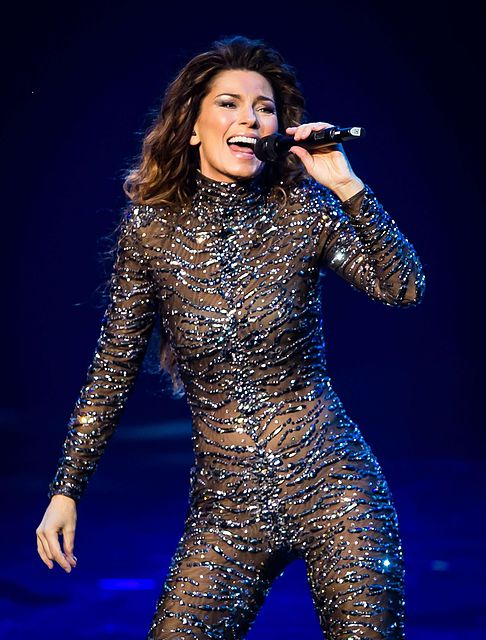 3. Shania Twain:   One of the most successful and rich Country singers in the world, is none other than Canada's very own,Shania Twain. For the past few years, she disappeared from the public eye, following a nasty divorce with Producer Mutt Lange. She came back stronger than ever. Book deals, Las Vegas Residency and she just wrapped up her sold out world tour in October of 2015.Selling more than 85 million records worldwide and being the best selling female Country artist of all time, Shania sits at #3 with a net worth of $350 million.
