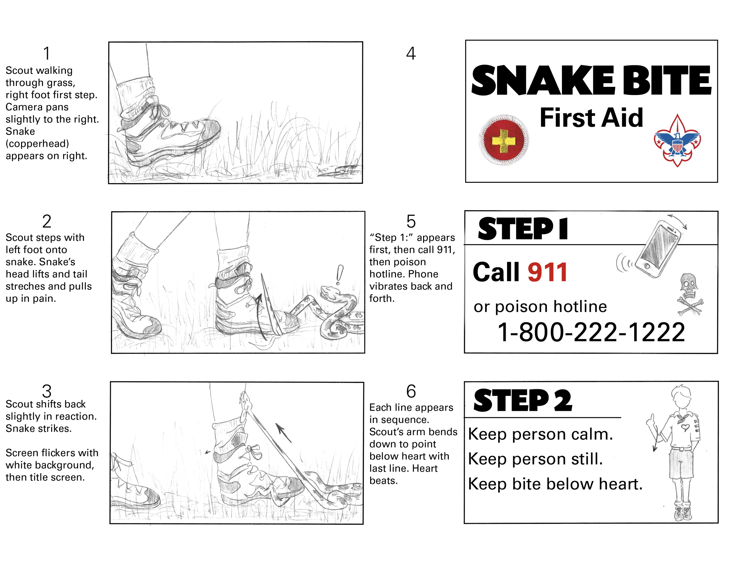 Storyboard Sketches for  Boy Scout First Aid: Snake Bite    Adobe Flash/Animate