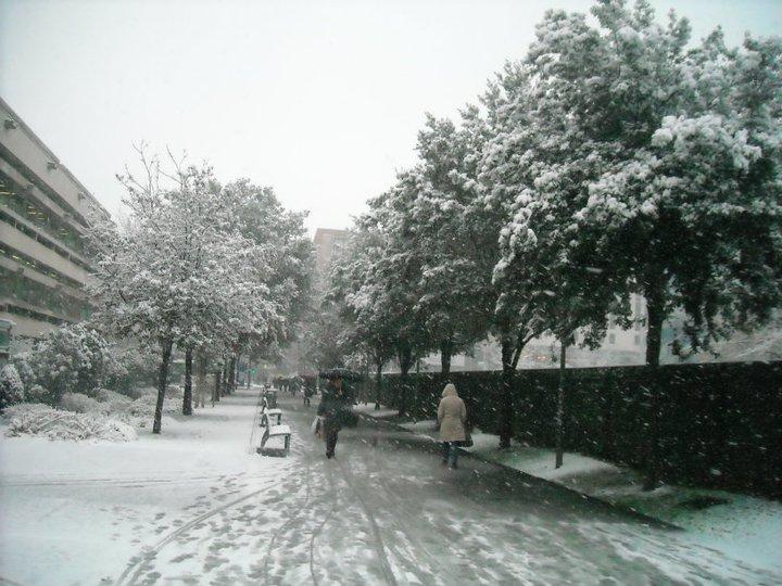 lyon-in-snow.jpg