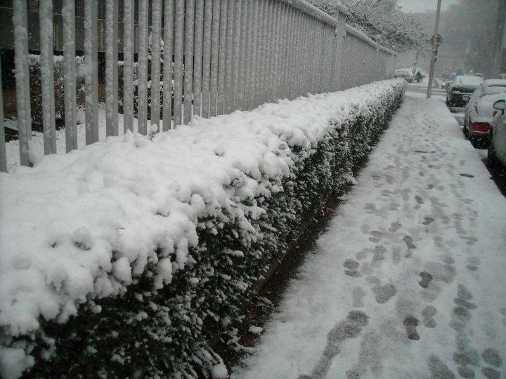 lyon-covered-in-snow.jpg