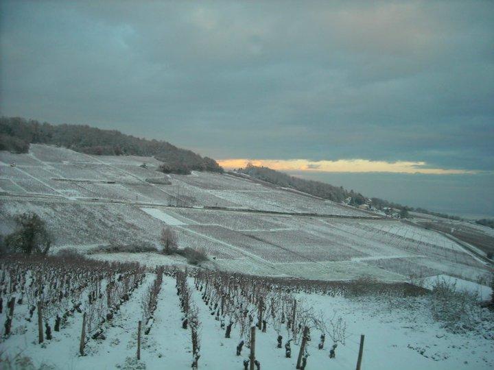 countryside-near-chalon.jpg