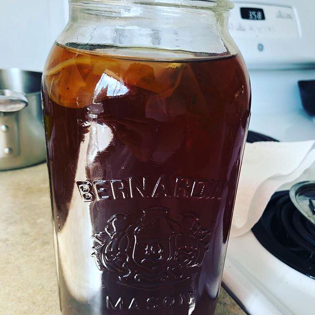 Chaga Mushroom Red Raspberry Leaf Kombucha ready to brew! #experimental #kombuchabrewing #chaga #redraspberry #homebrew #fermentedfoods #guthealth #adaptogens #mushroomtea #drinktoyourhealth #holisticnutrition