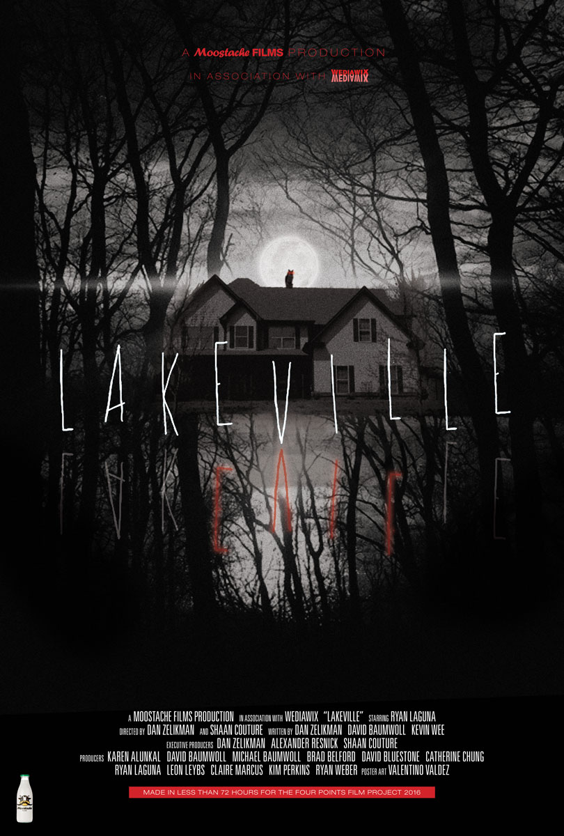 lakeville-one-sheet-WEB.jpg