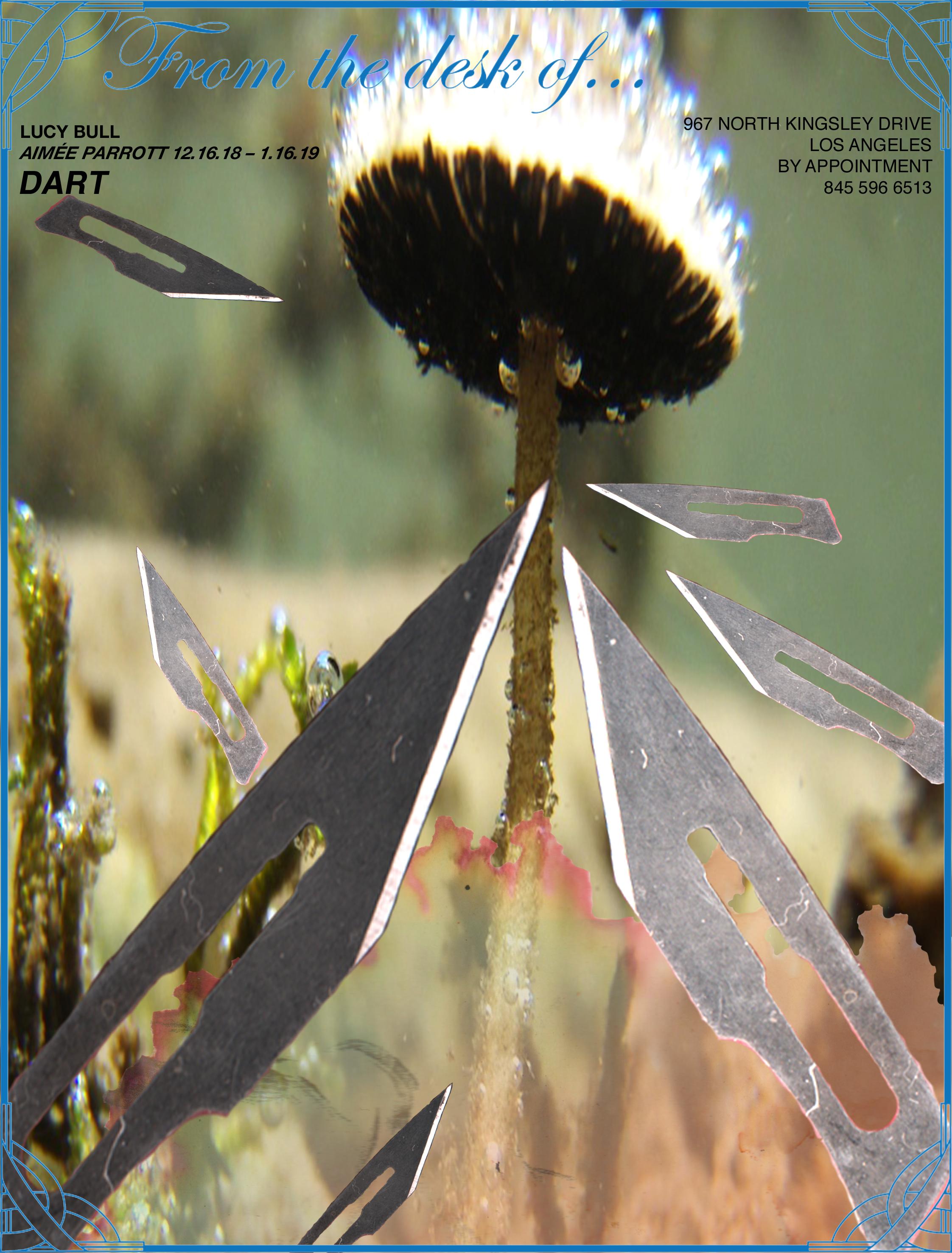 DART POSTER-2.jpg