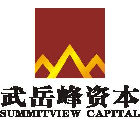 武岳峰资本.png