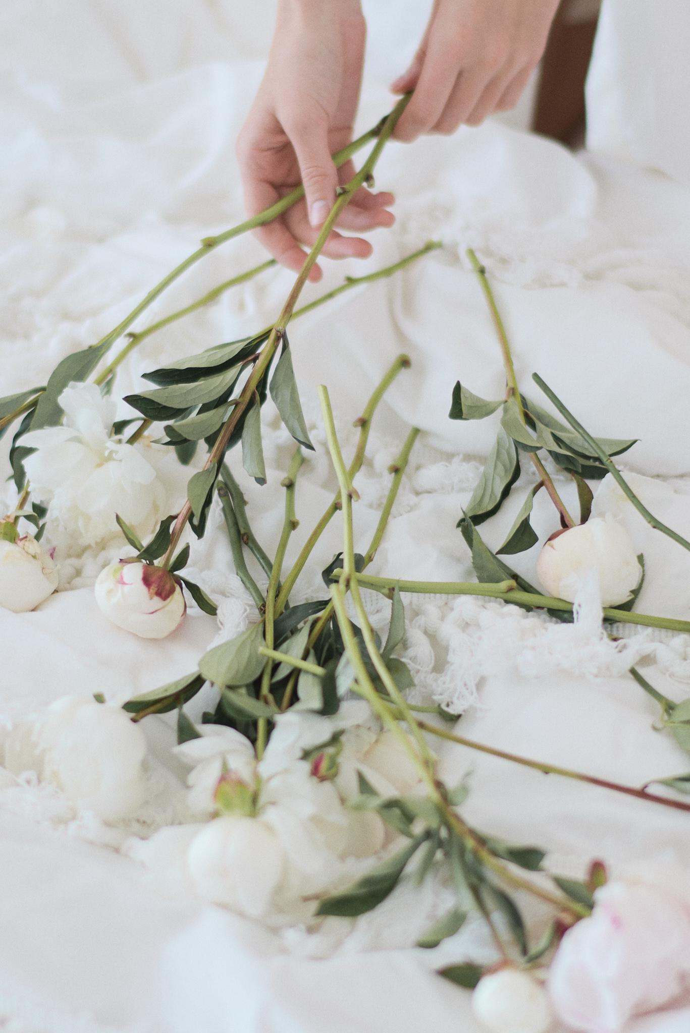 Sephory Photography - Romance is not dead 014 - Web.jpg