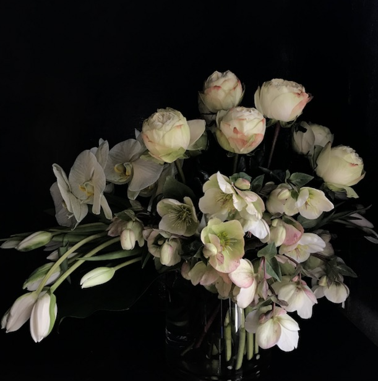 mr-theodore_flowers-vasette_01.jpg