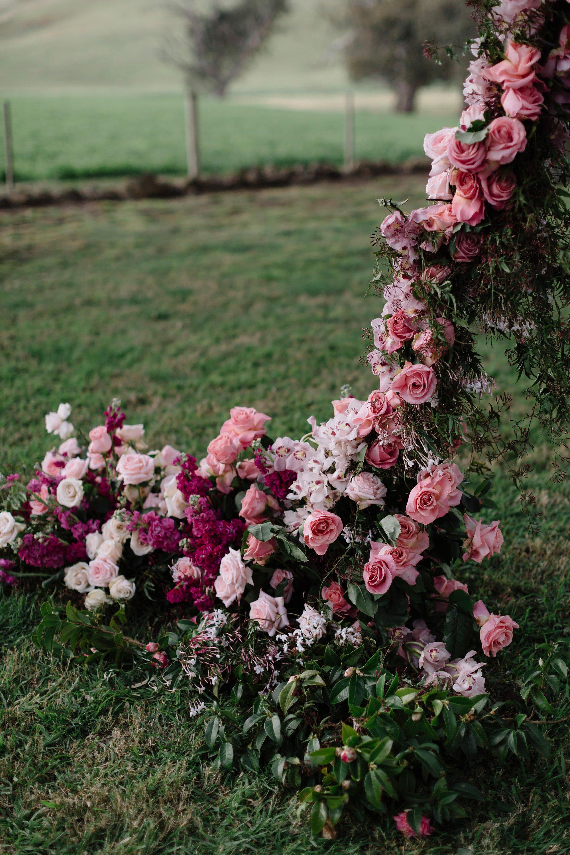 Images:  Cecilia Fox