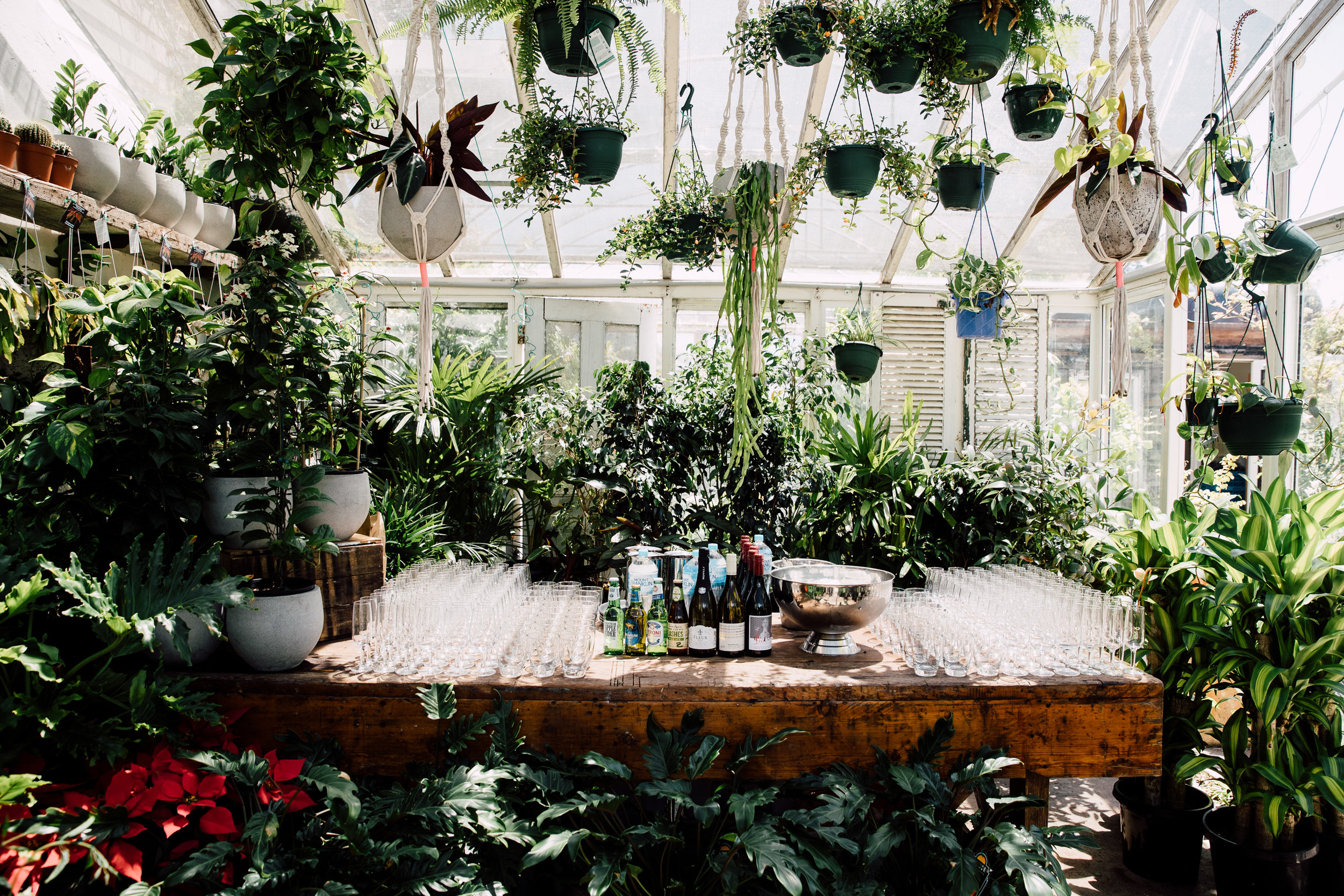 10 of the best wedding venues in Melbourne - Glasshaus - Mr Theodore