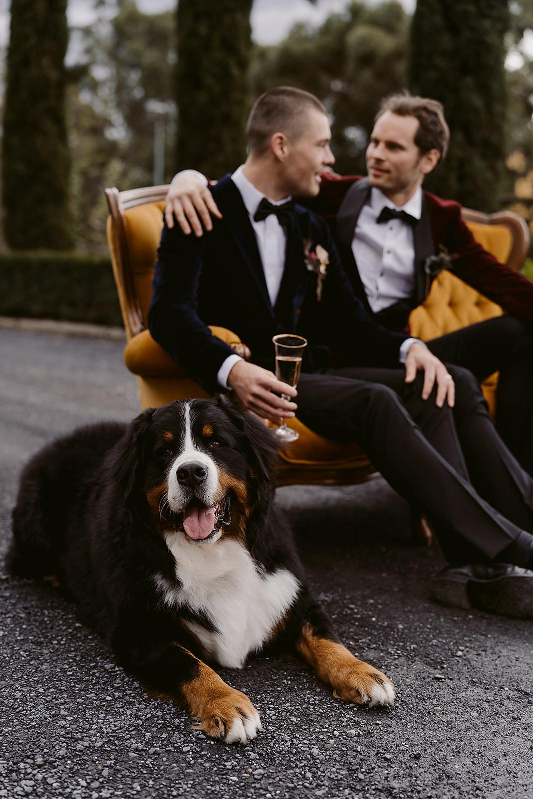 Immerse_Yarra_Valley_Same_Sex_Wedding_-_Ashleigh_Haase_Photography-68.jpg