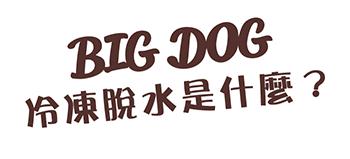 bigdog_fd_011.png