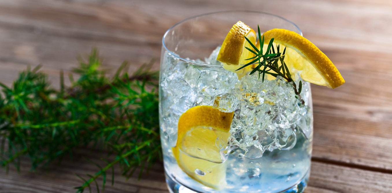THE GROWN UP EDIT - Gin & Tonic