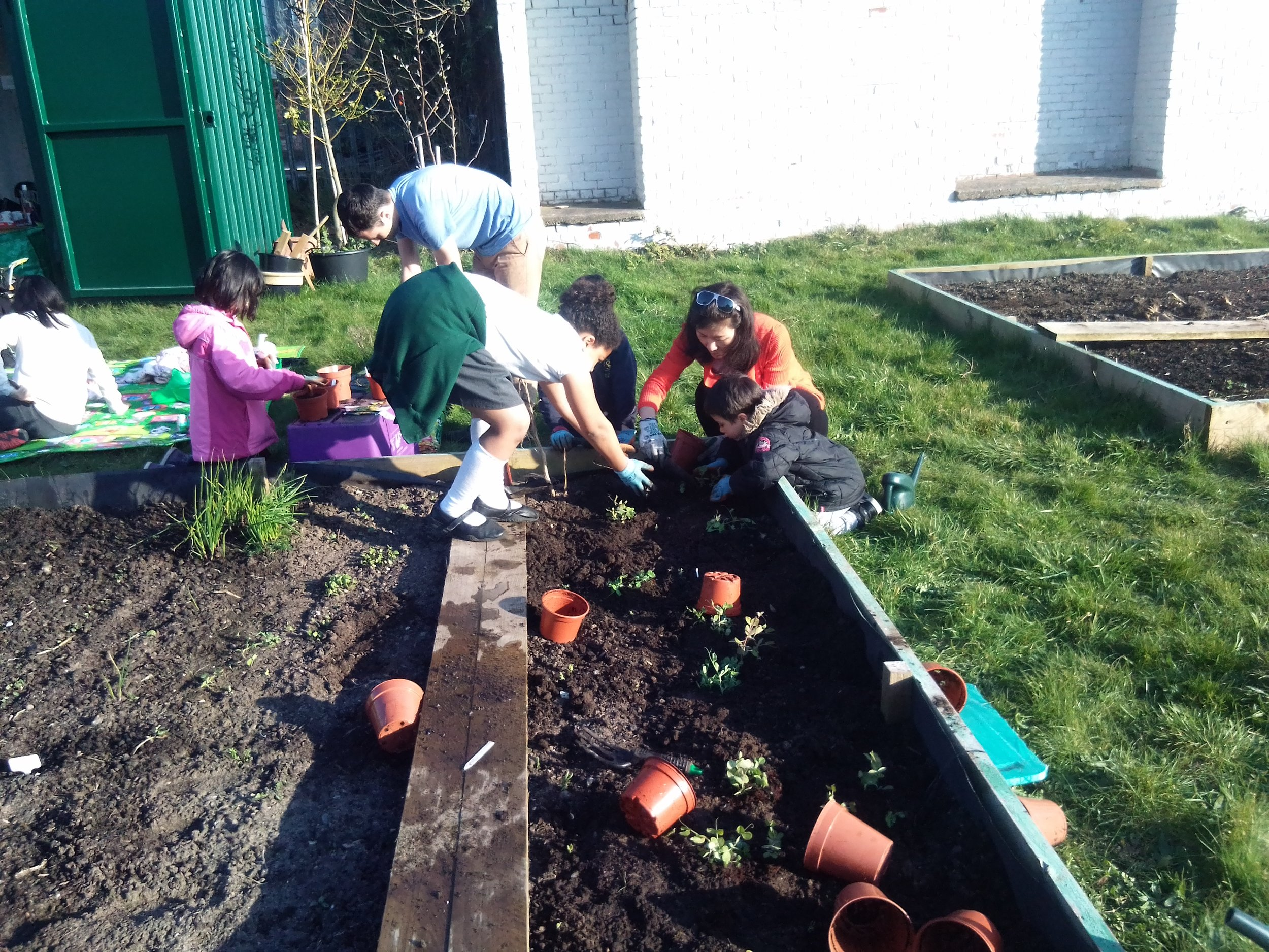 our Family Games Club BUSY IN THE COMMUNITY FOOD GROWING GARDEN