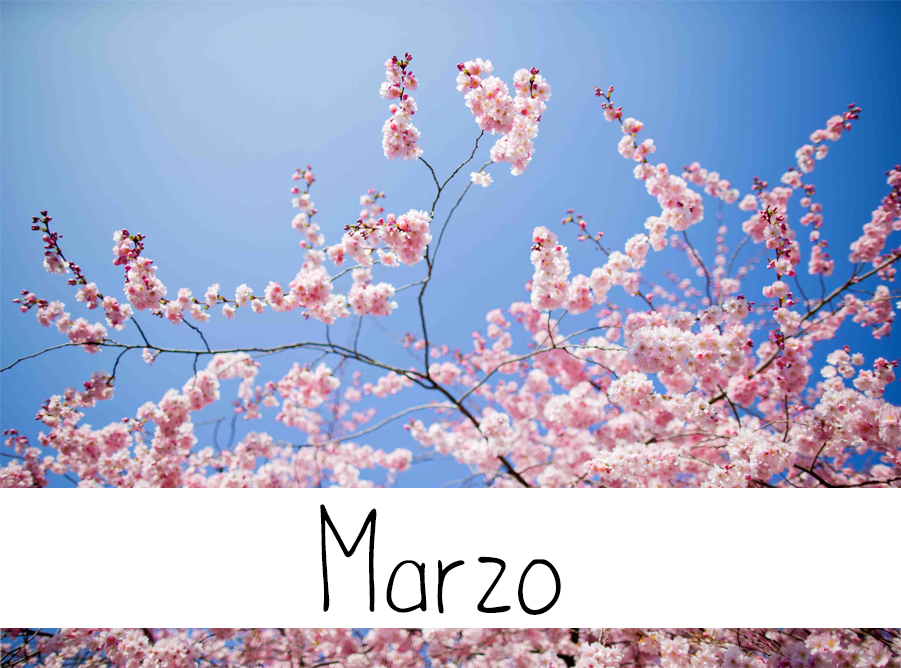 marzo wedding langhe roero tema matrimoniosposa marzo