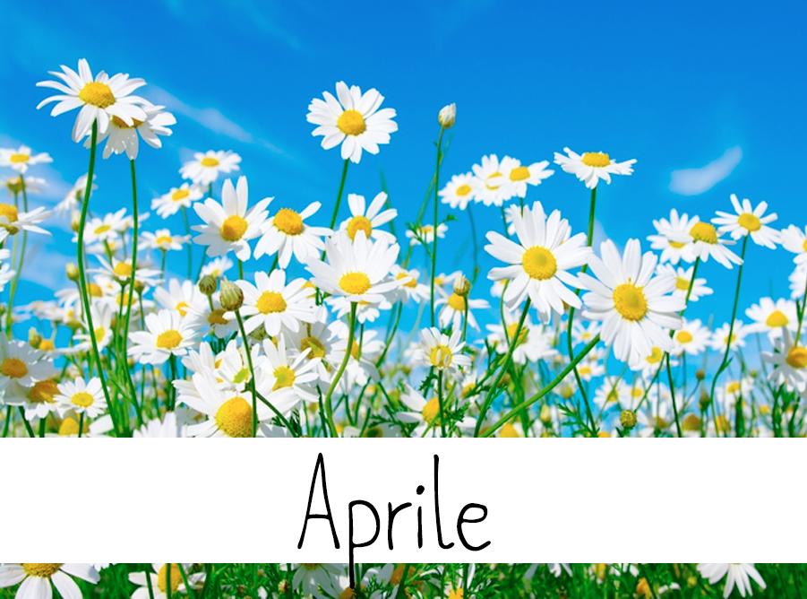 aprile tema matrimonio fiori wedding langhe roero