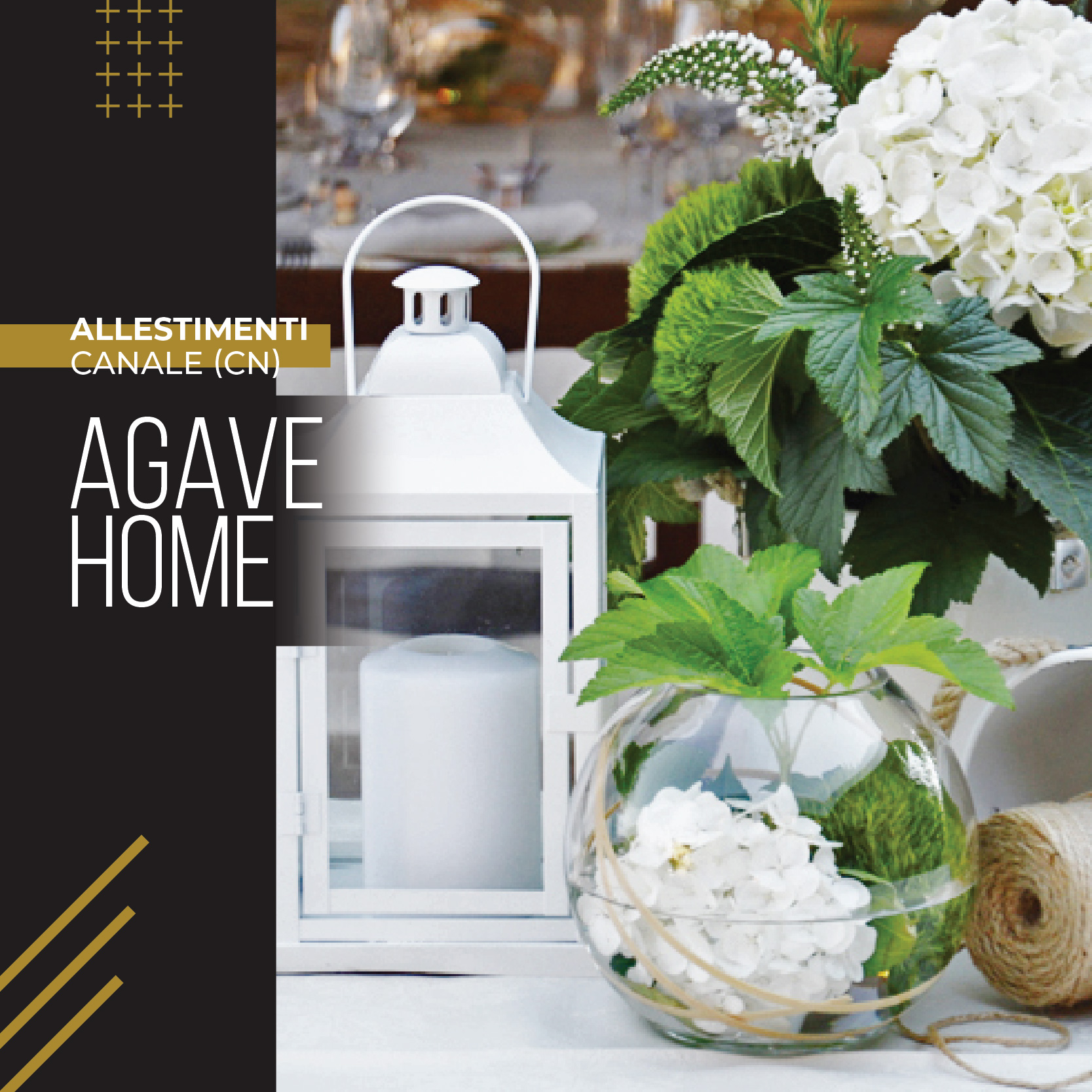 AGAVE HOME