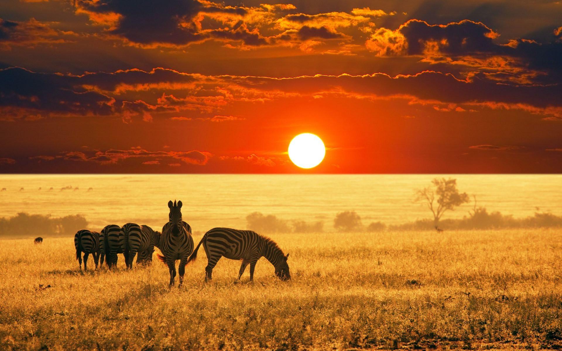 VIAGGI NOZZE AFRICA.jpg