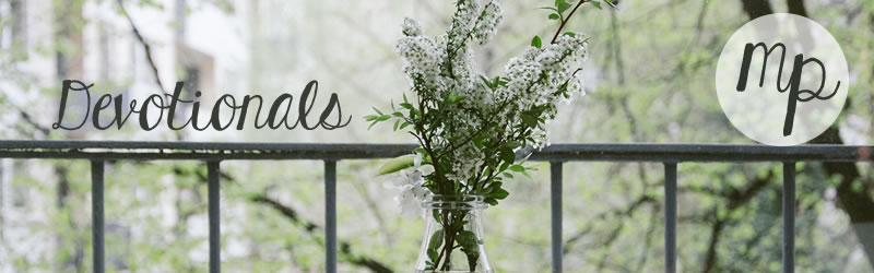 devotionals-white-flowers.jpg