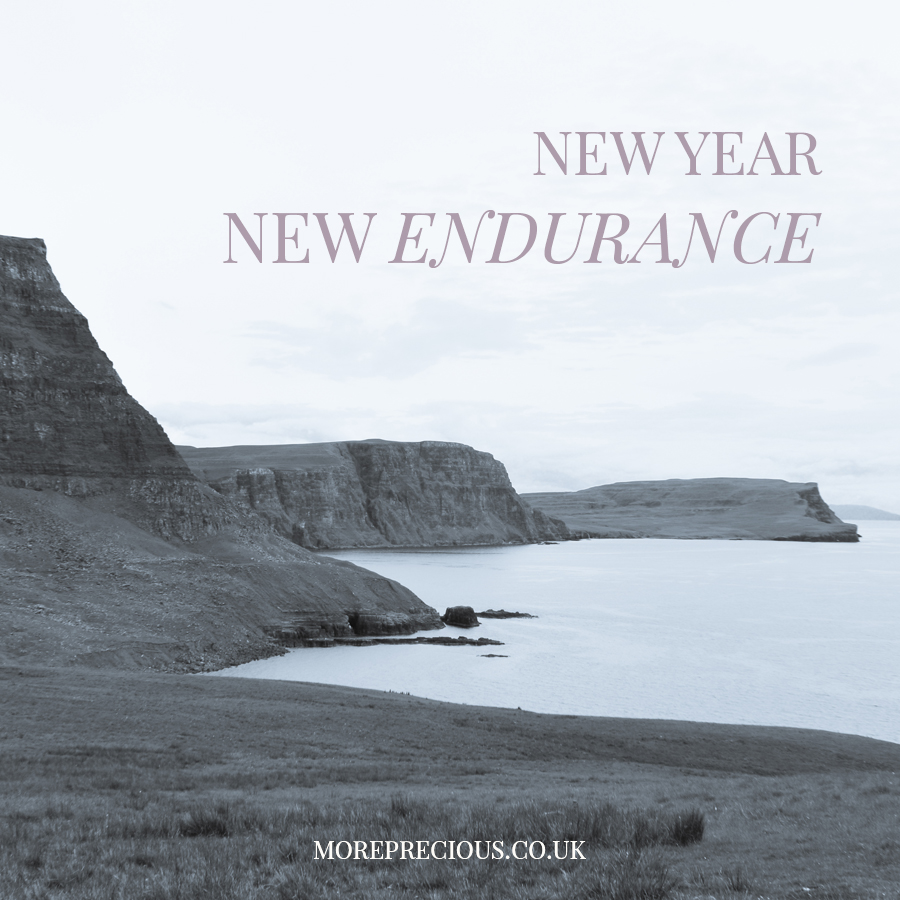 1 January, New Endurance.jpg