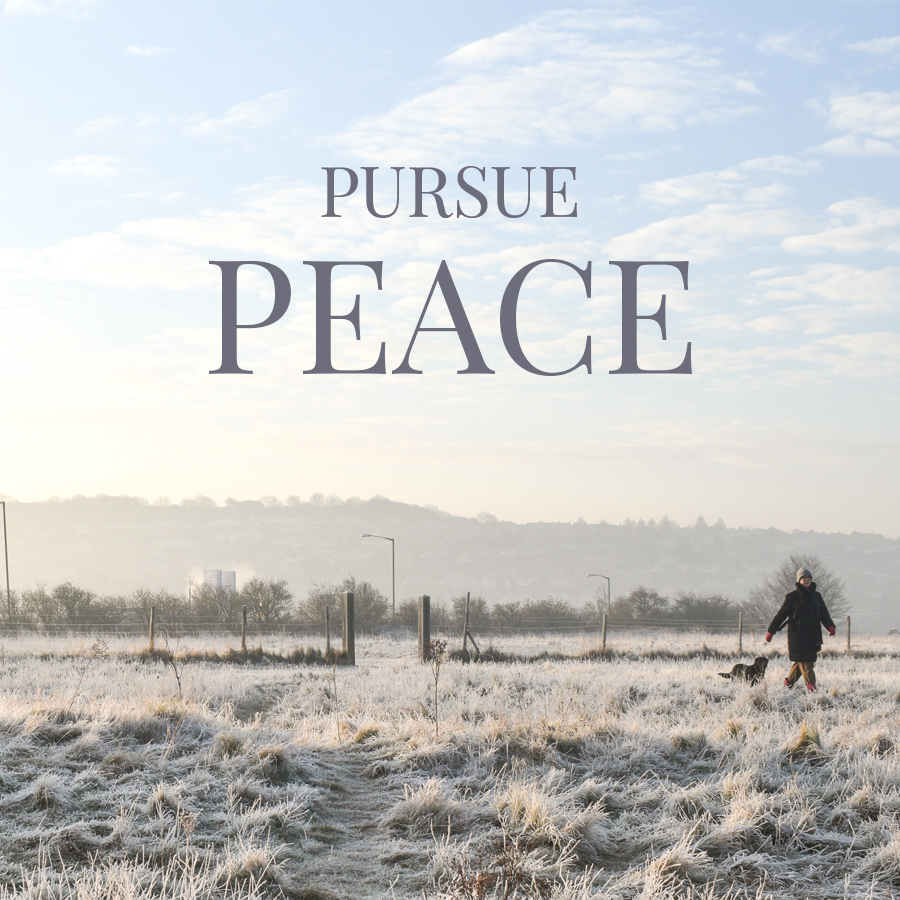 18 January, Pursue Peace.jpg