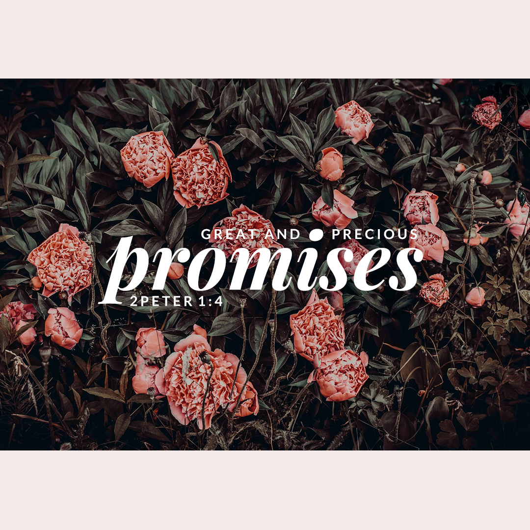 MORE PROMISES FINAL .png