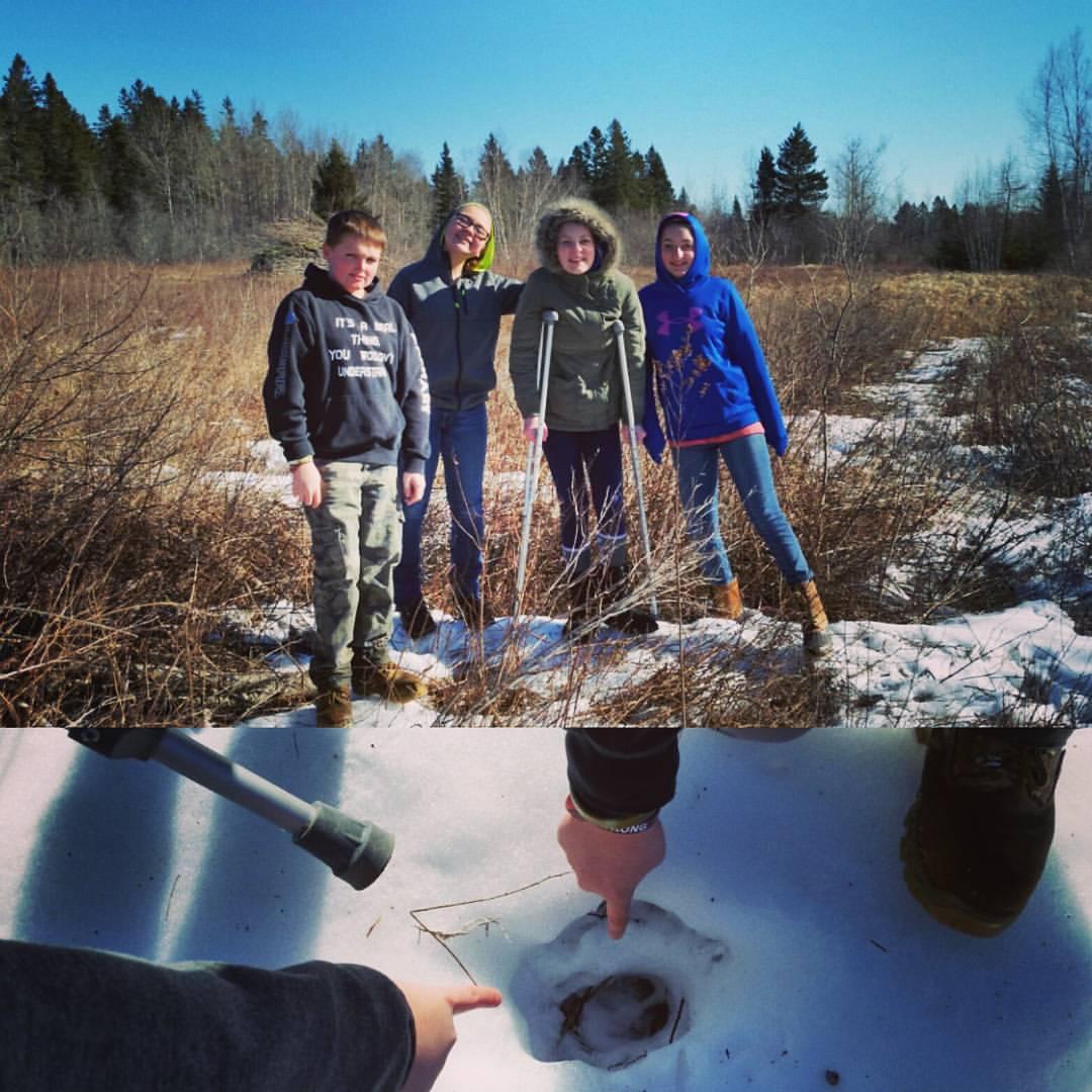 Narraguagus 7th-graders discovering deer tracks!