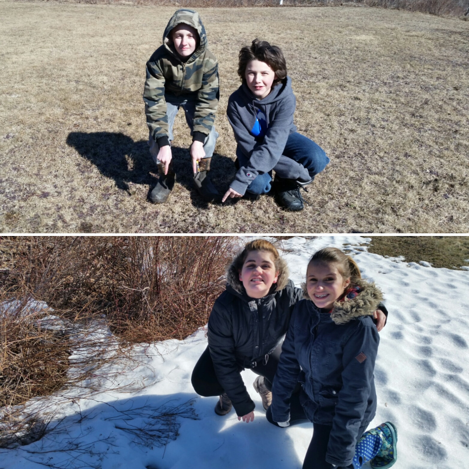 More discoveries of deer tracks and scat!
