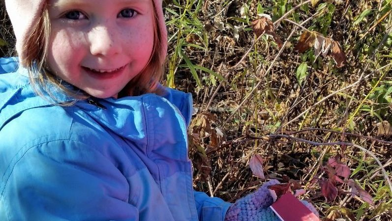 Jonesport student matching colors to nature