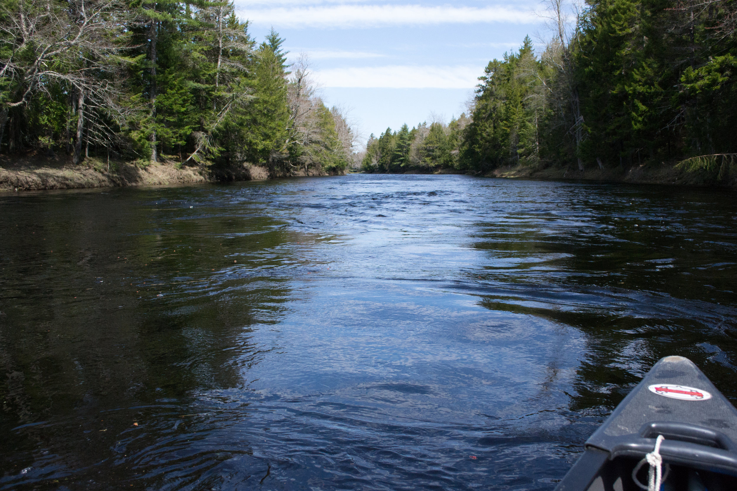 Paddling the Machias River in early May. Photo courtesy of H. Stark.
