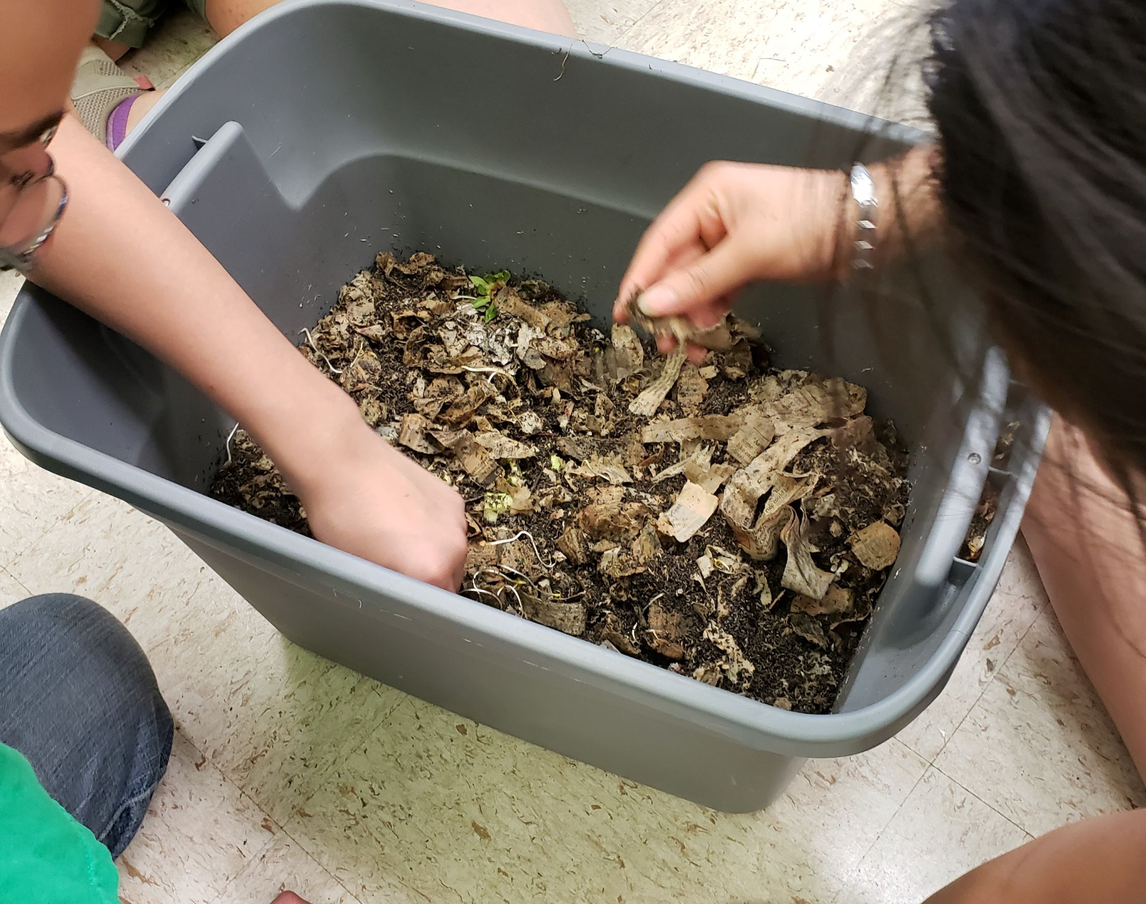After comparing dry baseball field soil with forest soil, students felt the contents of a worm bin to further understand nutrient cycling
