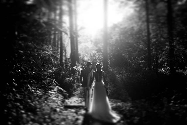 /and, happily ever after is not a fairy tale, but it's a choice/  Gino x Rachel
