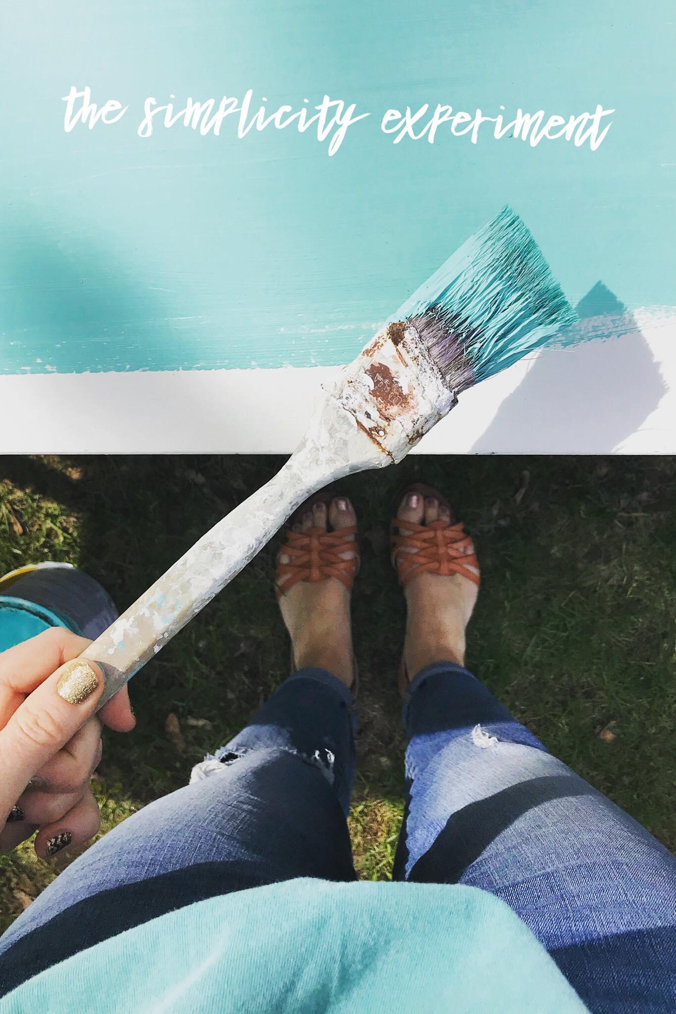 the simplicity experiment blue paintbrush
