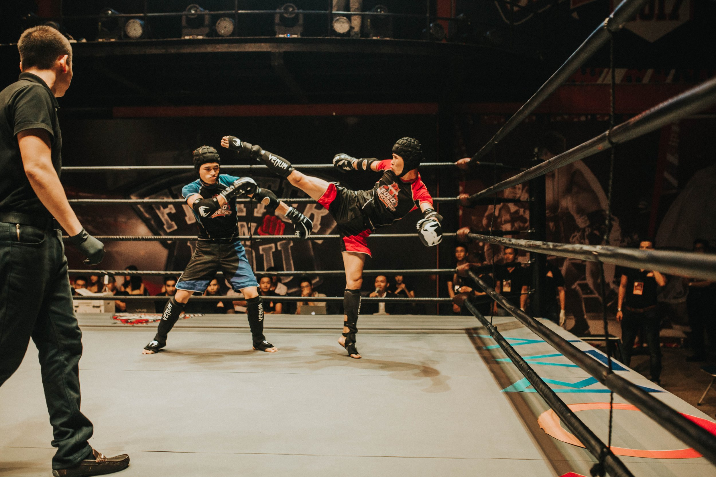 Martial Arts, including MMA, are a passion of Adele's.