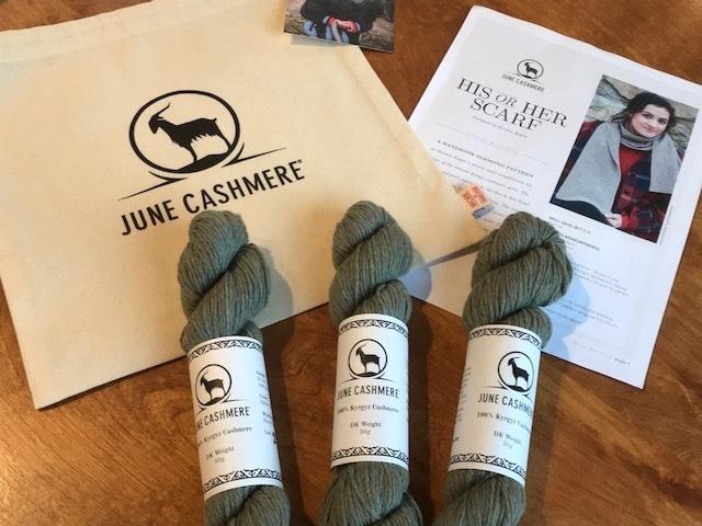 June Cashmere Kits Spun Ann Arbor.jpg