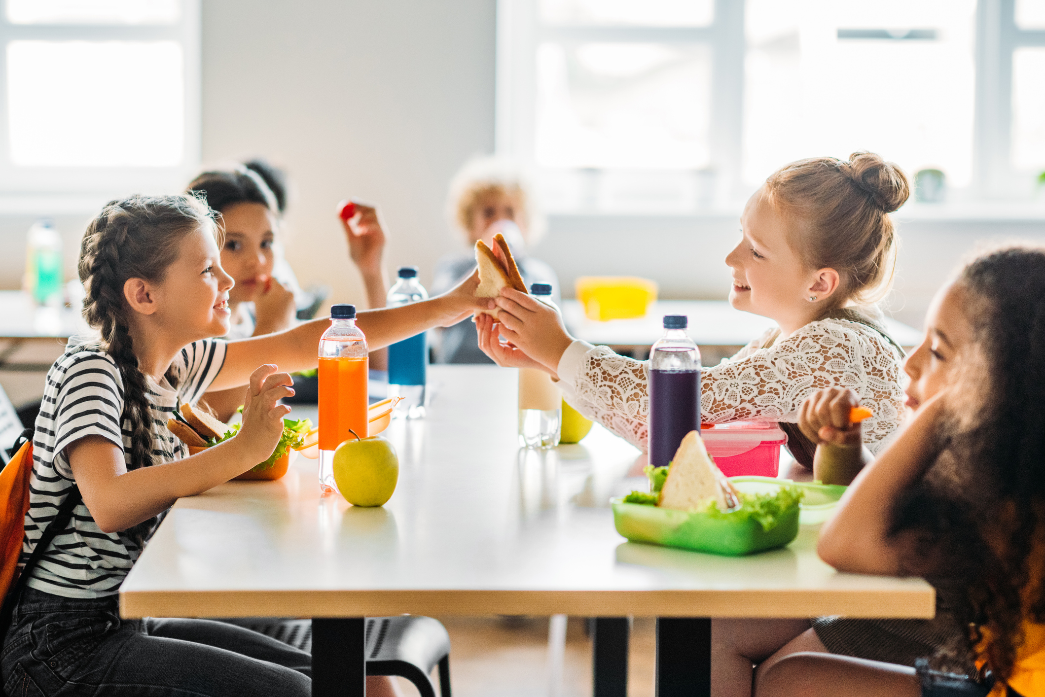 Consider A thorough planning of your kitchen/lunch space along with consulting with your state for health guidelines and possible funding with the national school lunch program.