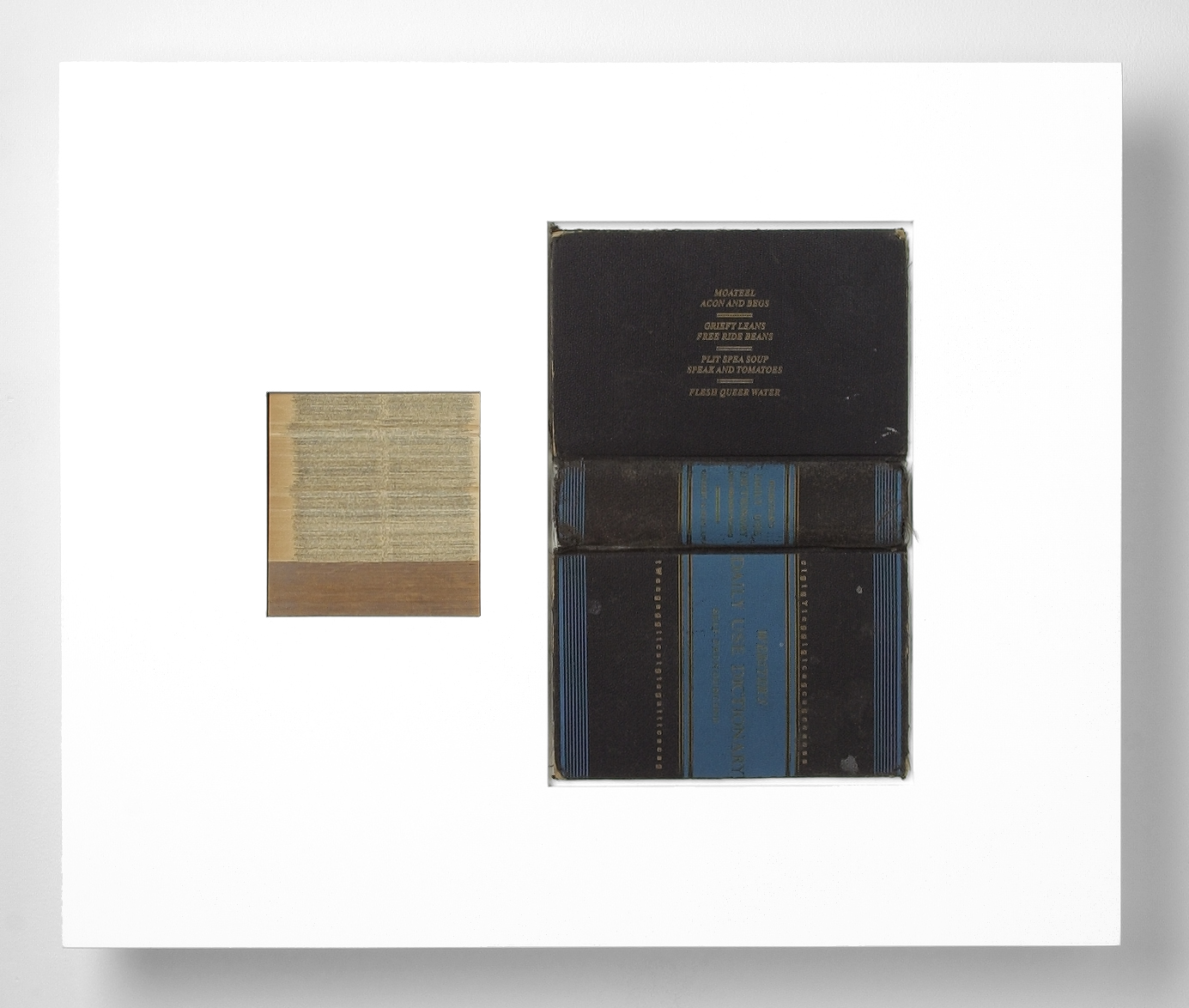 SNPs/slips (15) , laser engraved dictionary cover, pages, in lacquered frame, 20 x 24 x 2.75 inches, 2003